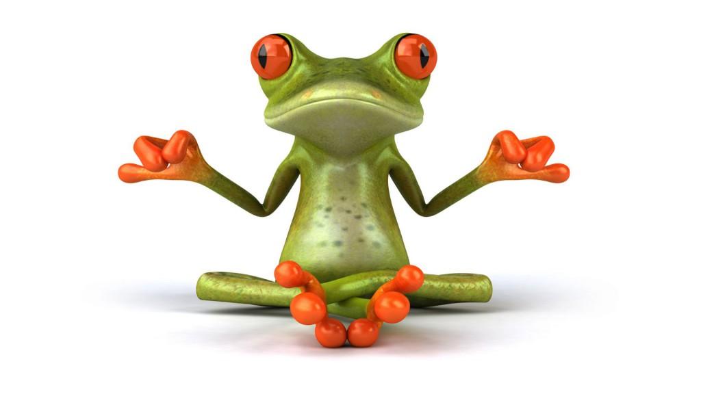 Frog_7