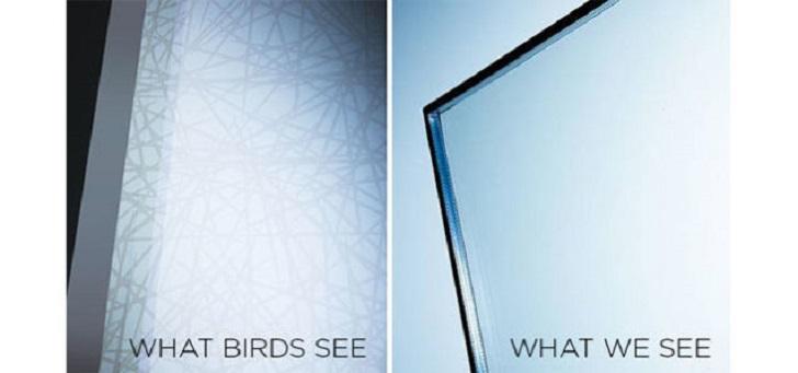 Post_2 - glass